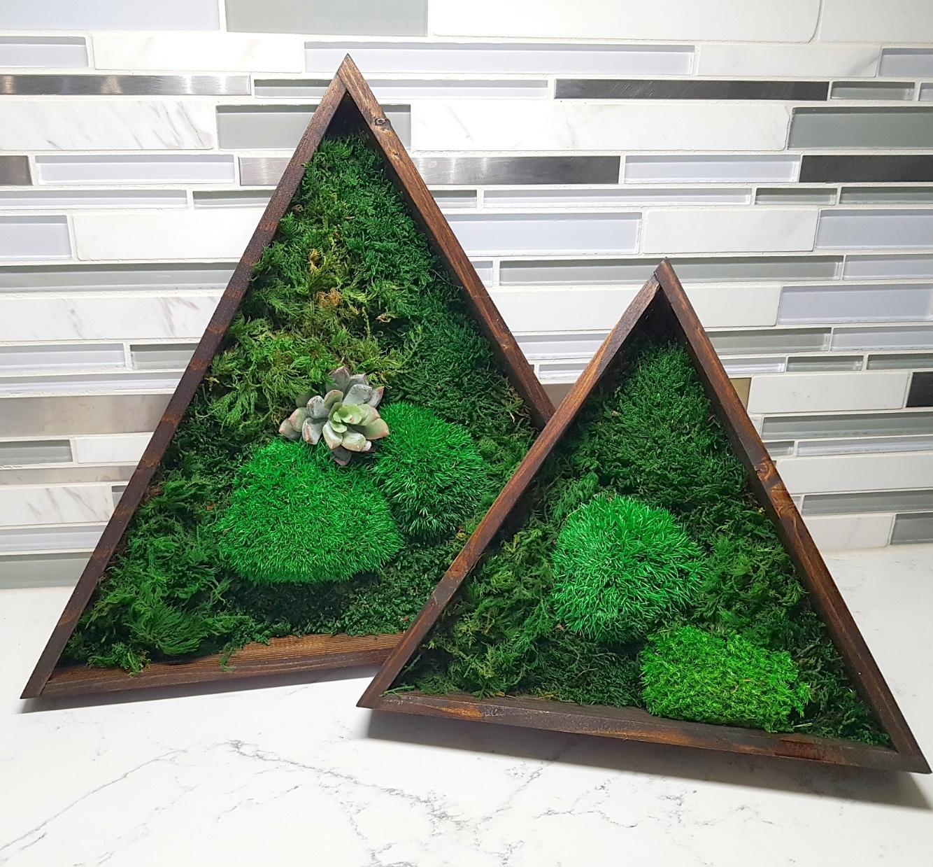 Triangular Mossart