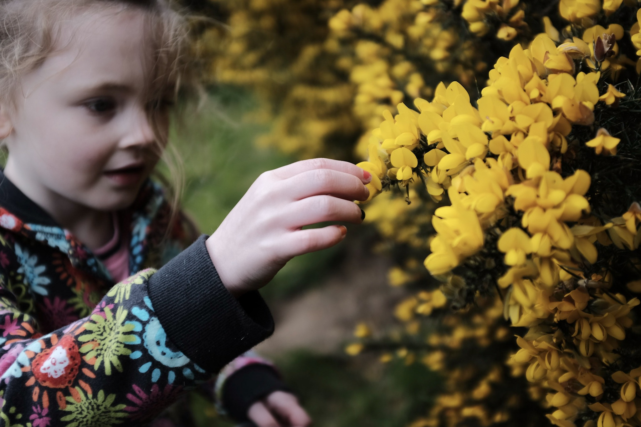 Picking the flowers.