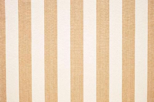 Ceylon Stripe - Gold & Cream