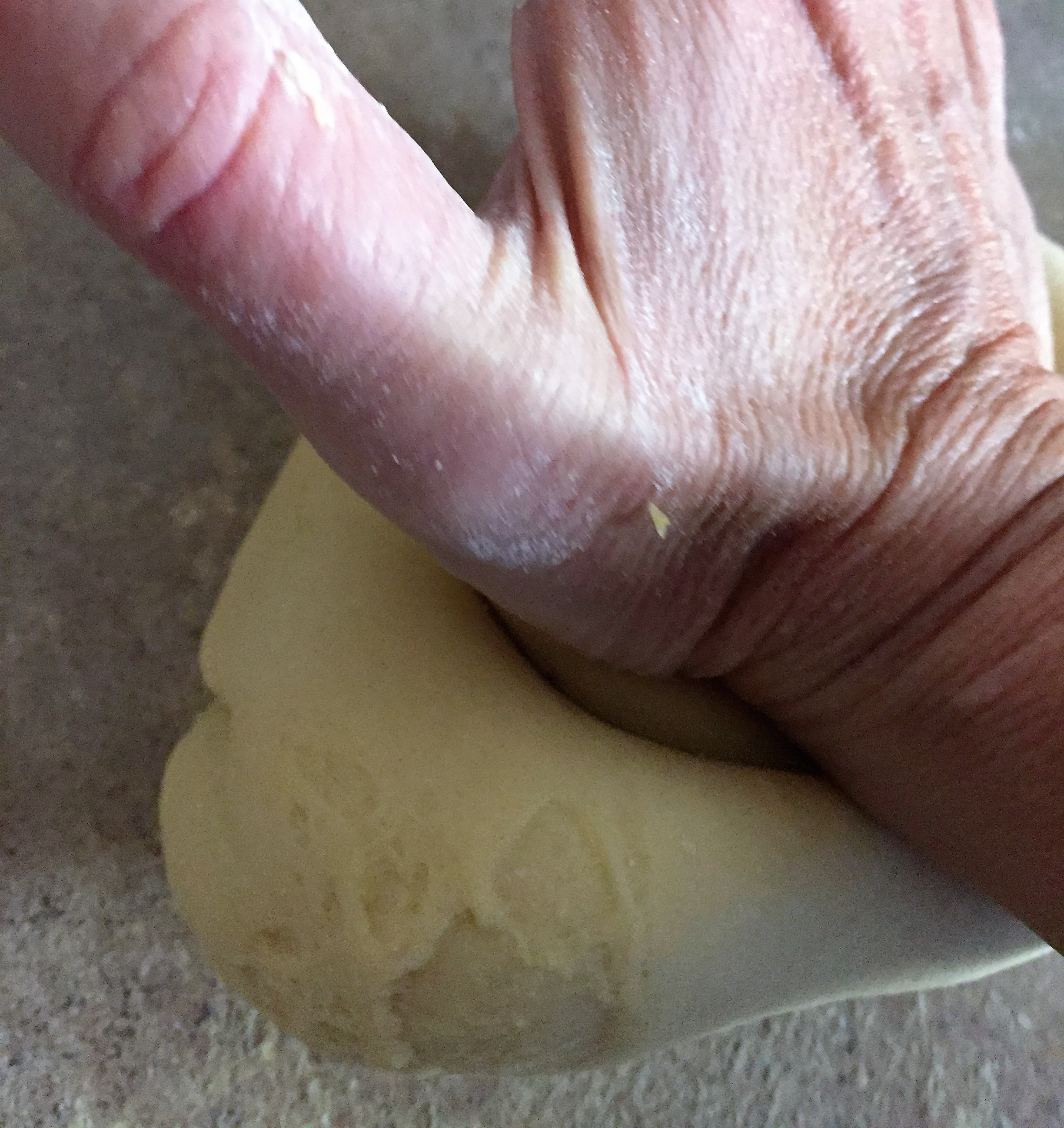 You can see here, I am pushing down and away from myself with the heel of my hand. Each time, then folding the dough over itself and re-kneading.