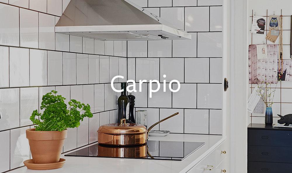 Carpio-3.jpg