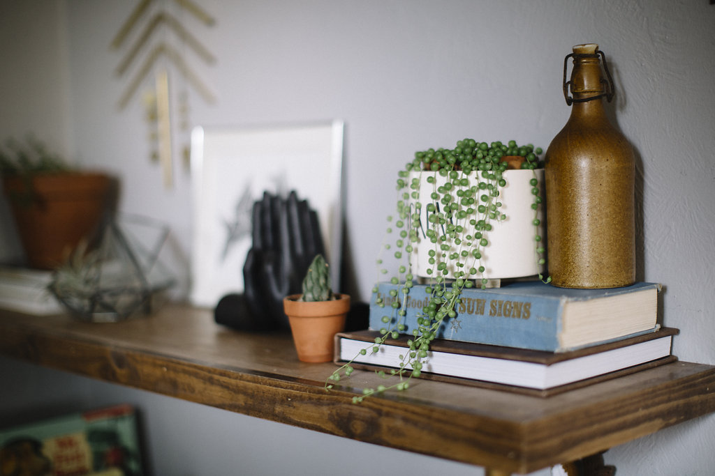 The plant on top of the blue book is called a String of Pearls and is one our favorites.