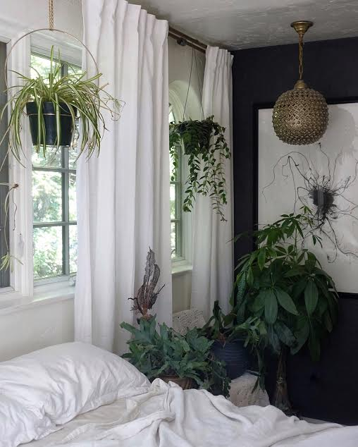 A spider plant hangs in a vintage brass plant ring. To the right is a hanging lipstick plant. A blue star fern is next to the bed and standing tall is a money tree plant.
