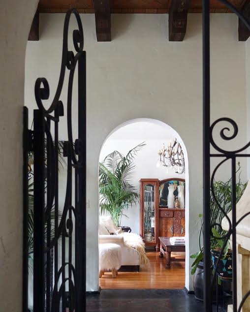 A cluster of potted plants enjoy the light filled entry way
