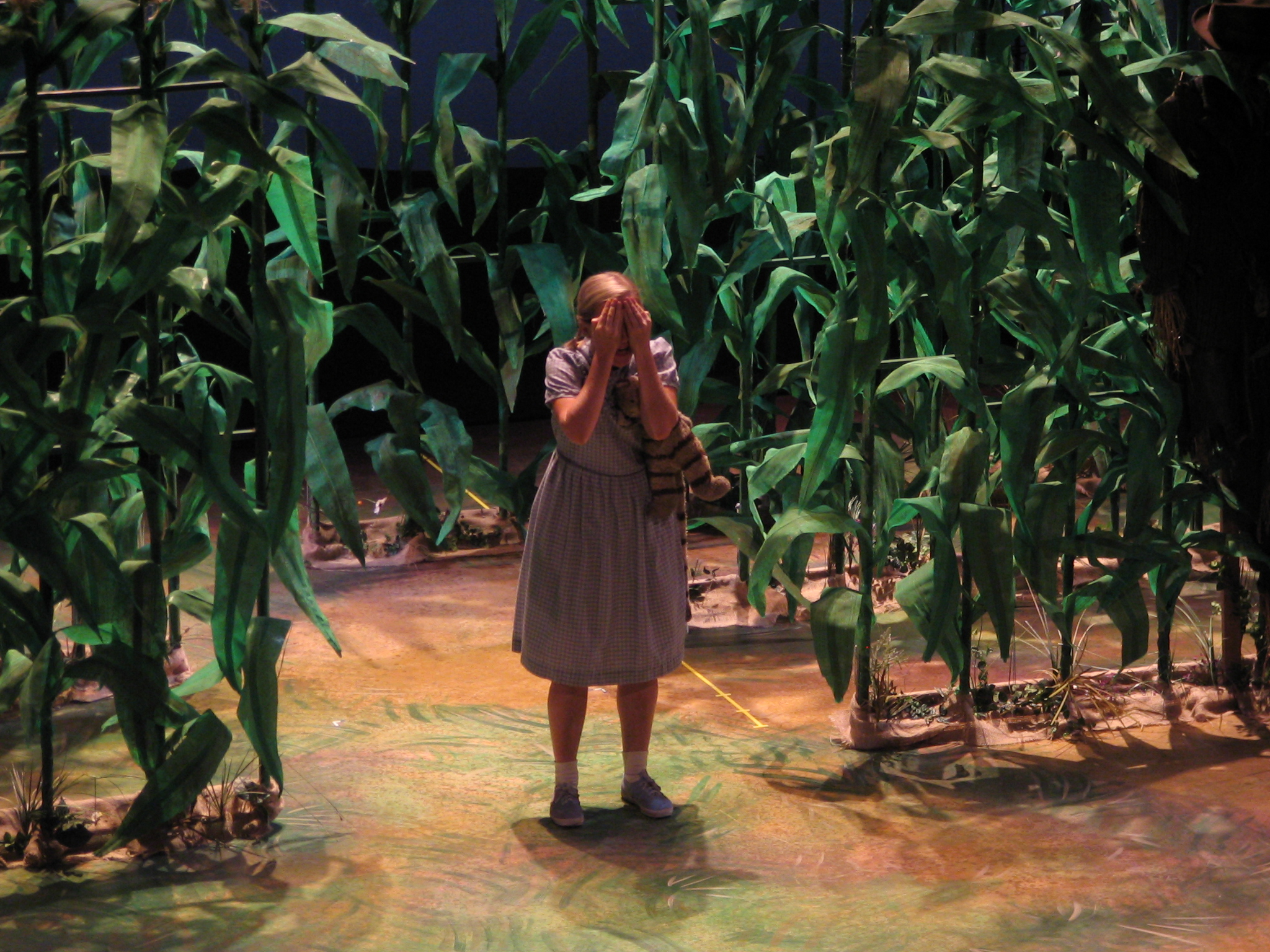 3 - Gretel in the corn.jpg