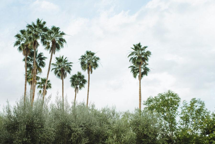 palm-springs-wedding-0051-51-899x600.jpg