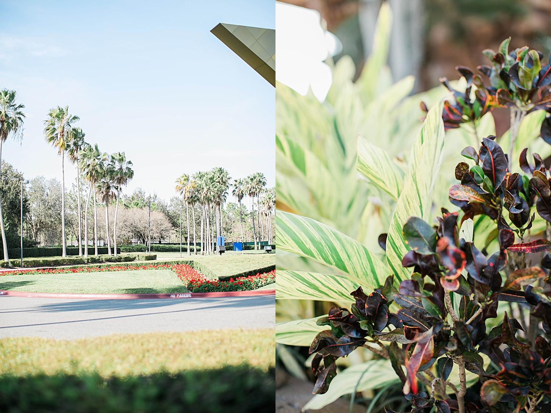 disney-world-orland-florida-photographer-jbmariephotography