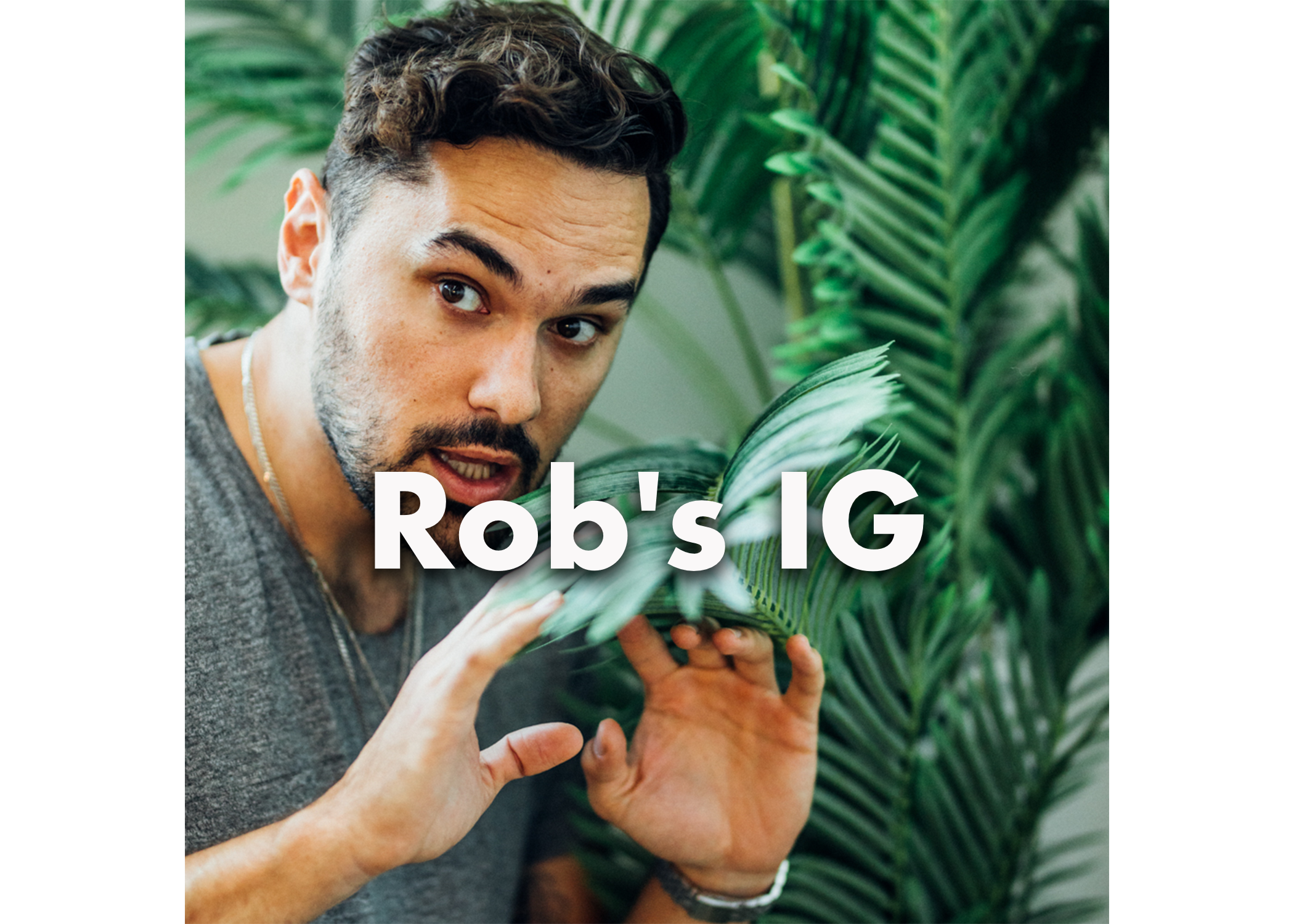 robs-ig.png