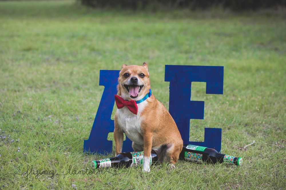 excited dog with shiner standing in front of letters