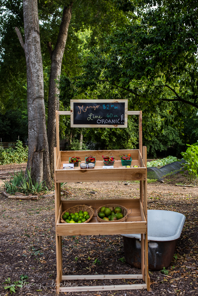 Local produce stand at Eden East in Austin, TX. Photo by Erin Reas of Flying Lantern Photography