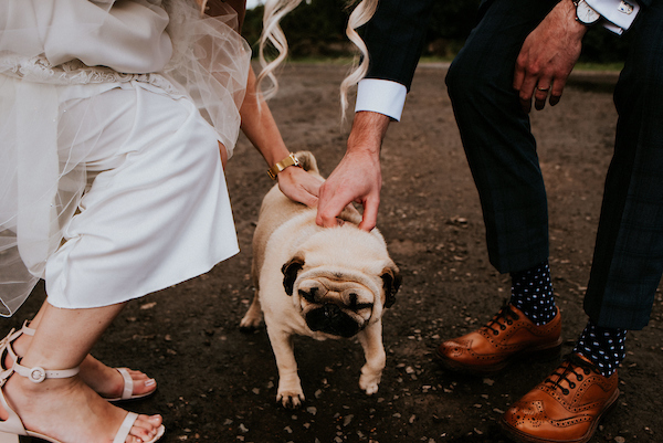 Loakes and Pugs at The Normans Photo by Shutter Go Click Photography