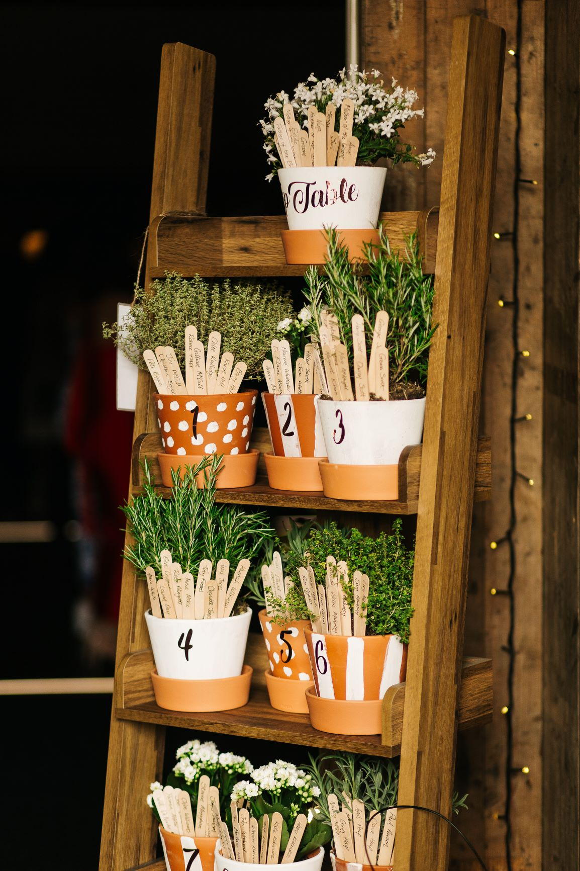 Potty table plan. Photo by pauljosephphotography.com.jpg