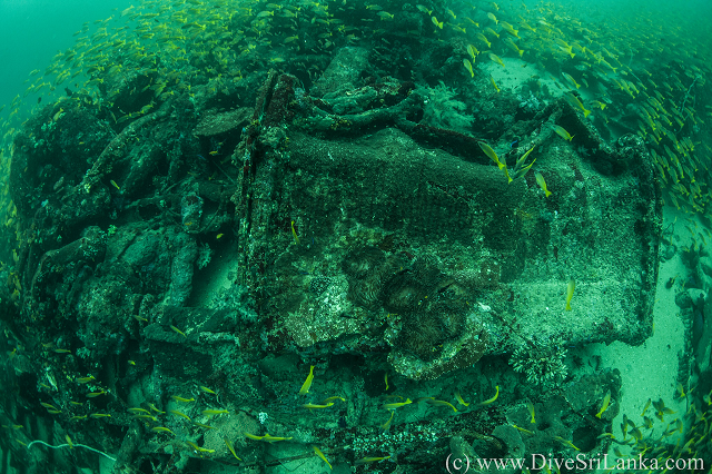 HMS Hollyhock stern side wreck2-small.png