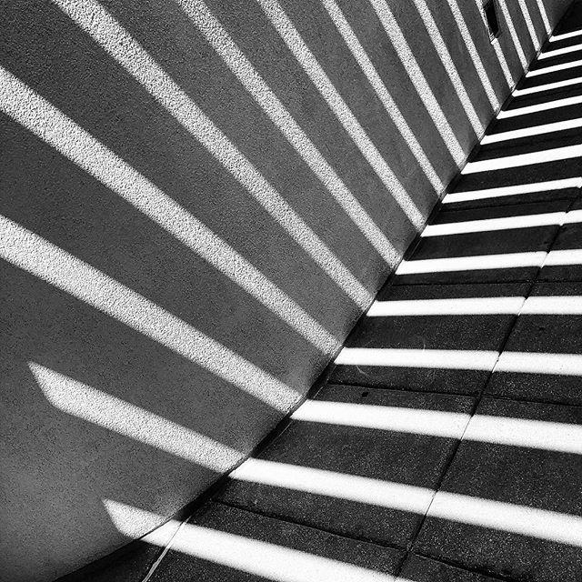 Sunlight & shadows