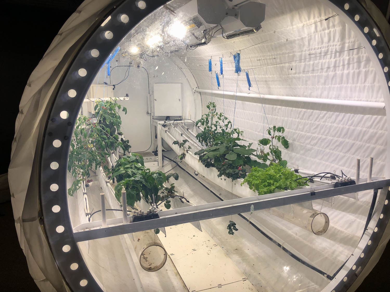 Biosphere2-2521.jpg