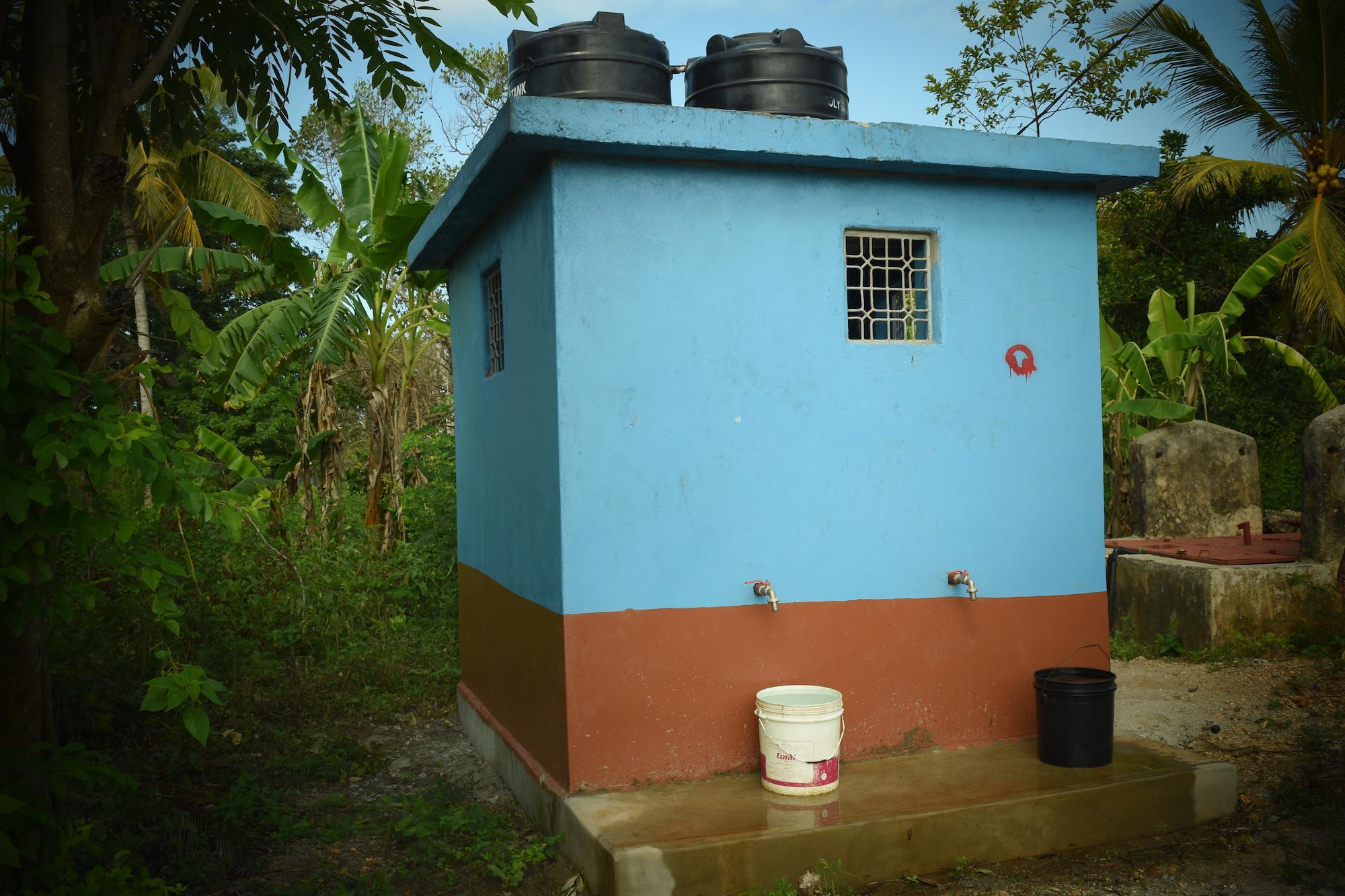 water plant house.JPG