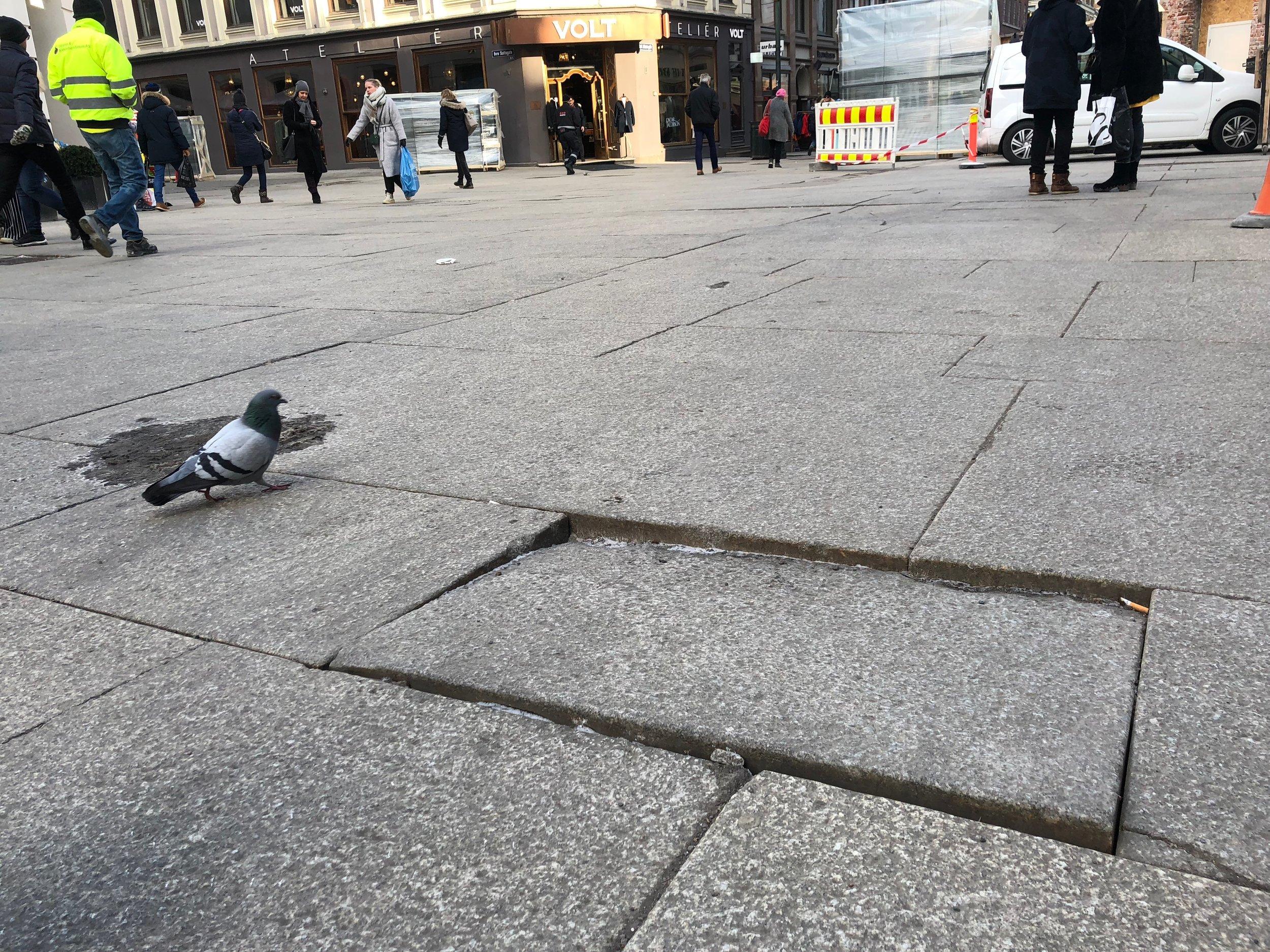 Vil MDG bytte navn på Karl Johansgate, slik at den blir oppkalt etter en kvinne? Her en scene fra Egertorget.