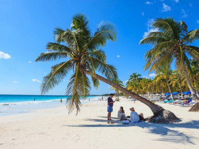 sd-aspect-1488988568-tulum-beach-trees.jpg