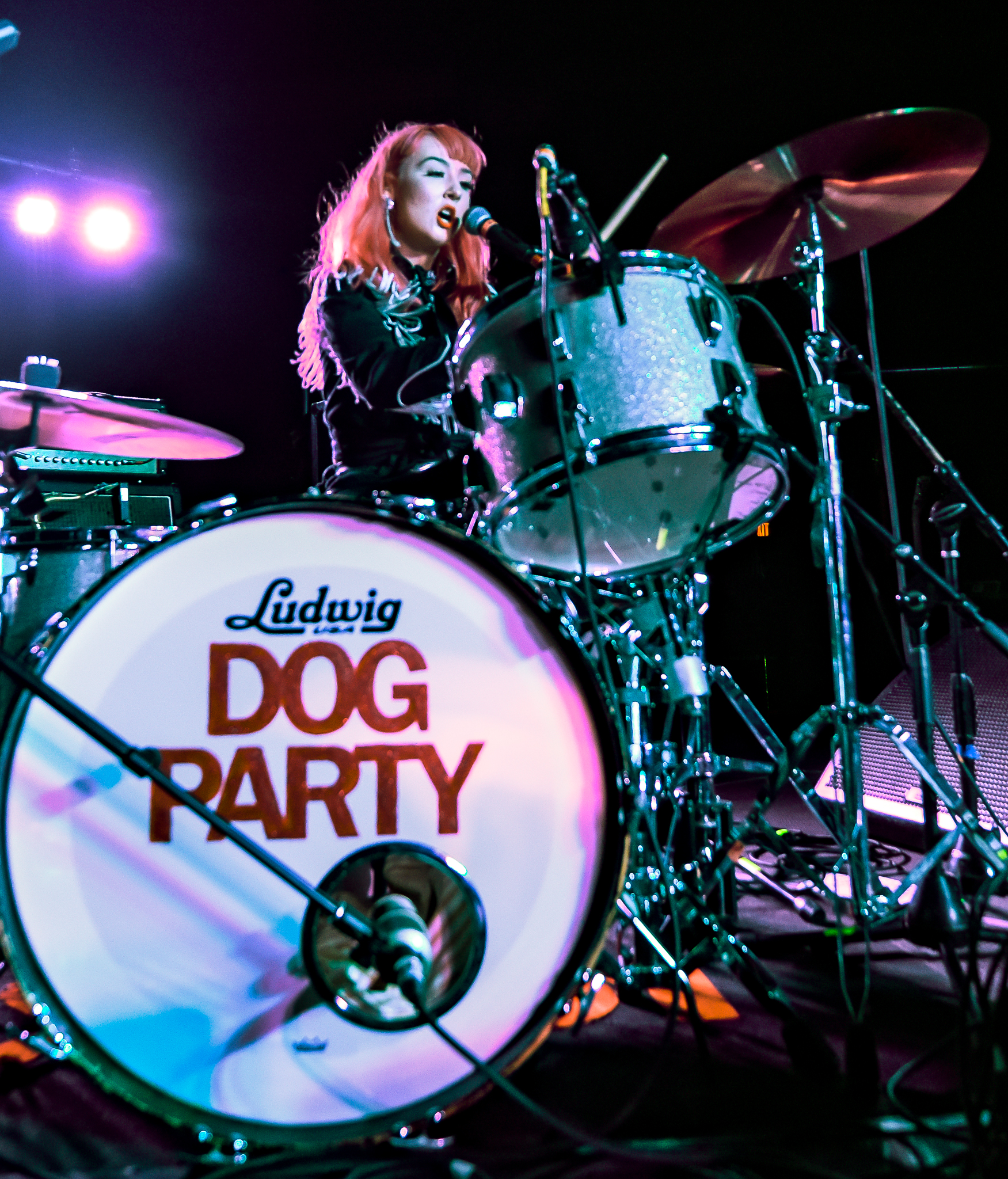 Alma Reed Dog Party-6.JPG