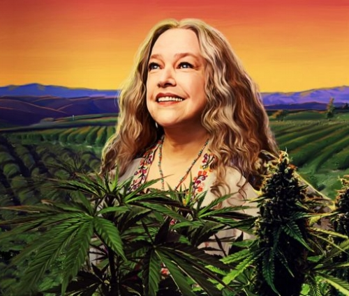 disjointed-netflix.jpg