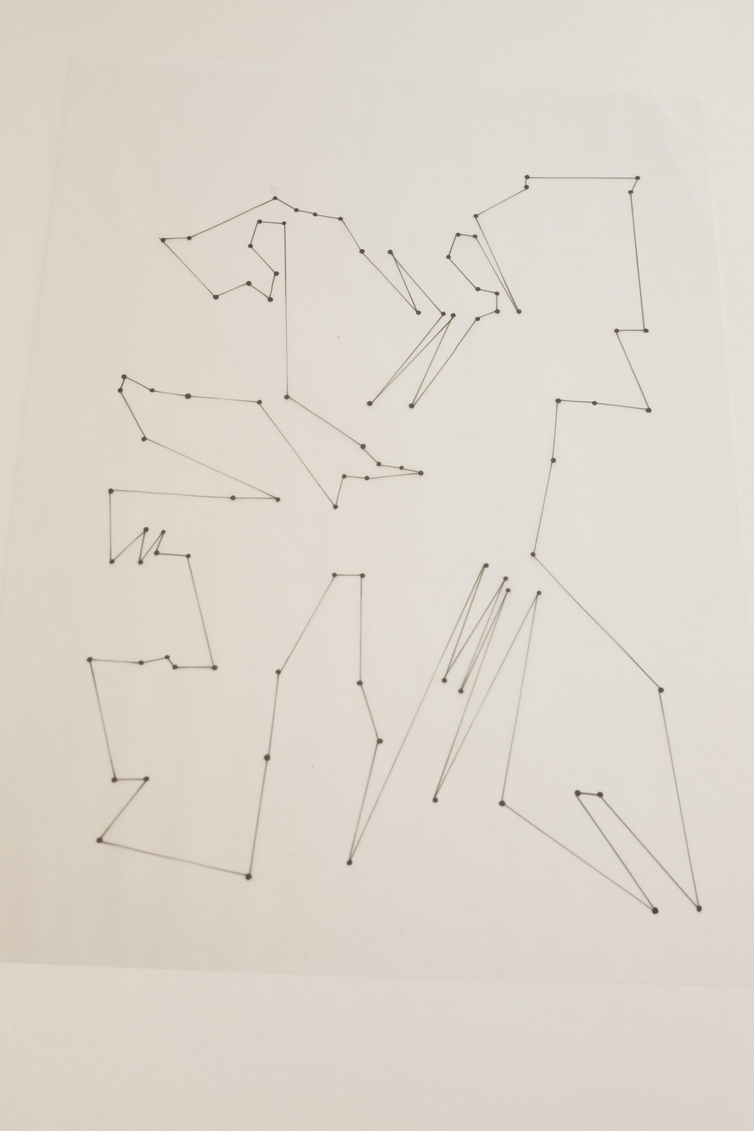 Callejuca   2018, DINA3, tinta negra sobre papel vegetal  Foto: Esther Camacho