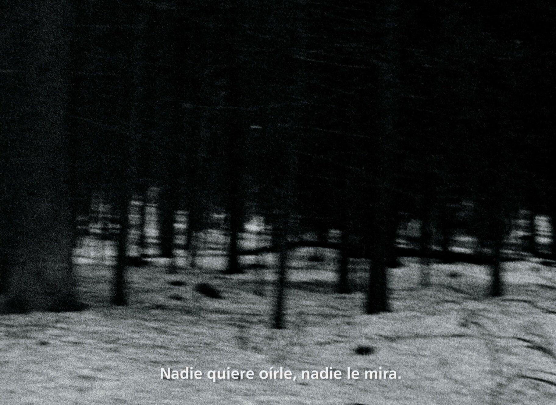 Frame_Variaciones_Winterreise-4.jpg