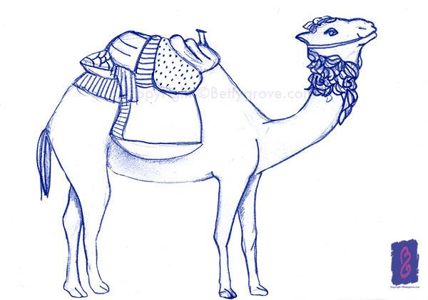 Camel -