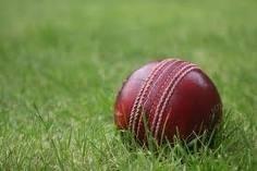 m_cricket.jpg