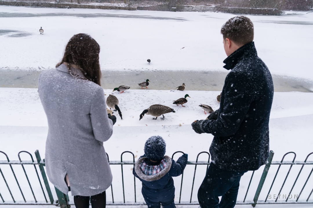 Mum, Dad and Son feeds the ducks