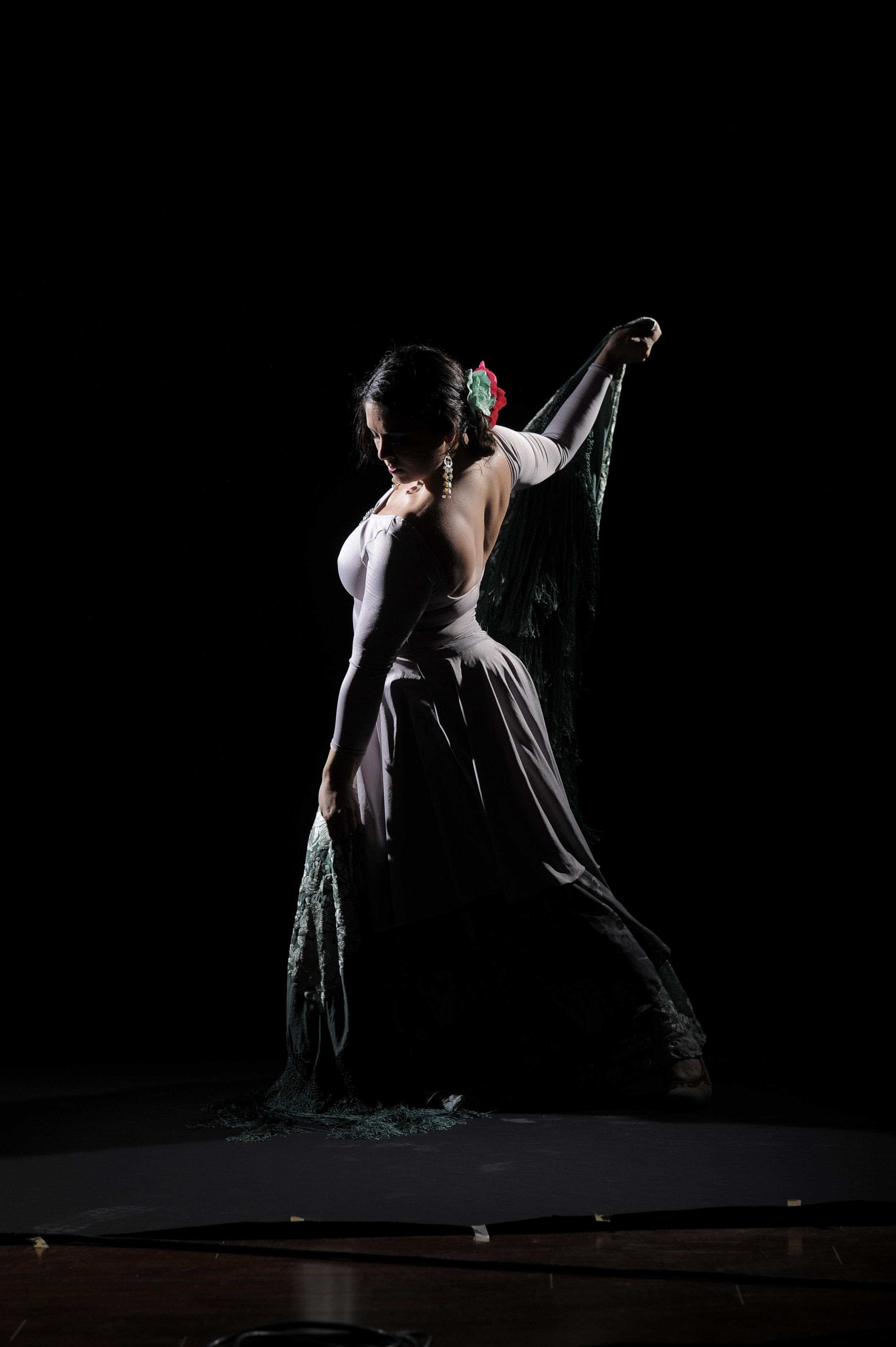 Flamenco-399.jpg