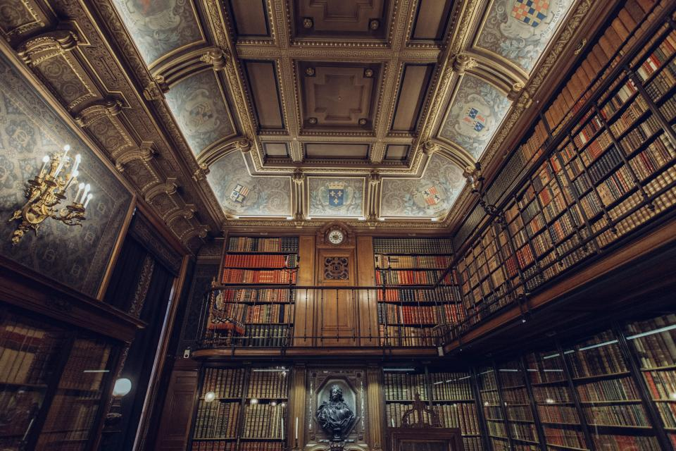 Library Books Choosing