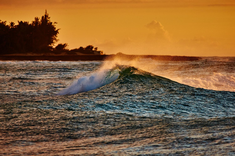 WAVES AT TURTLE BAY
