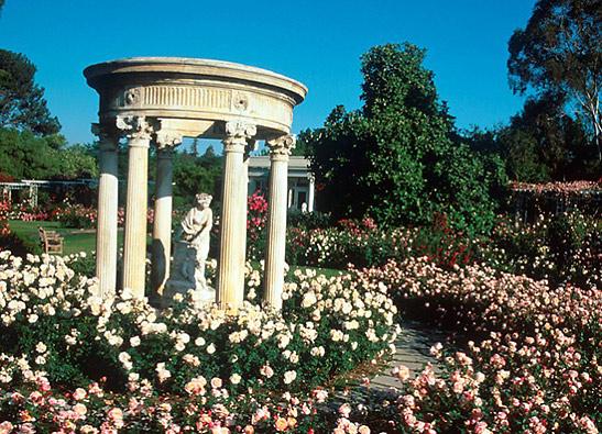 Pasadena Rose Tea Garden