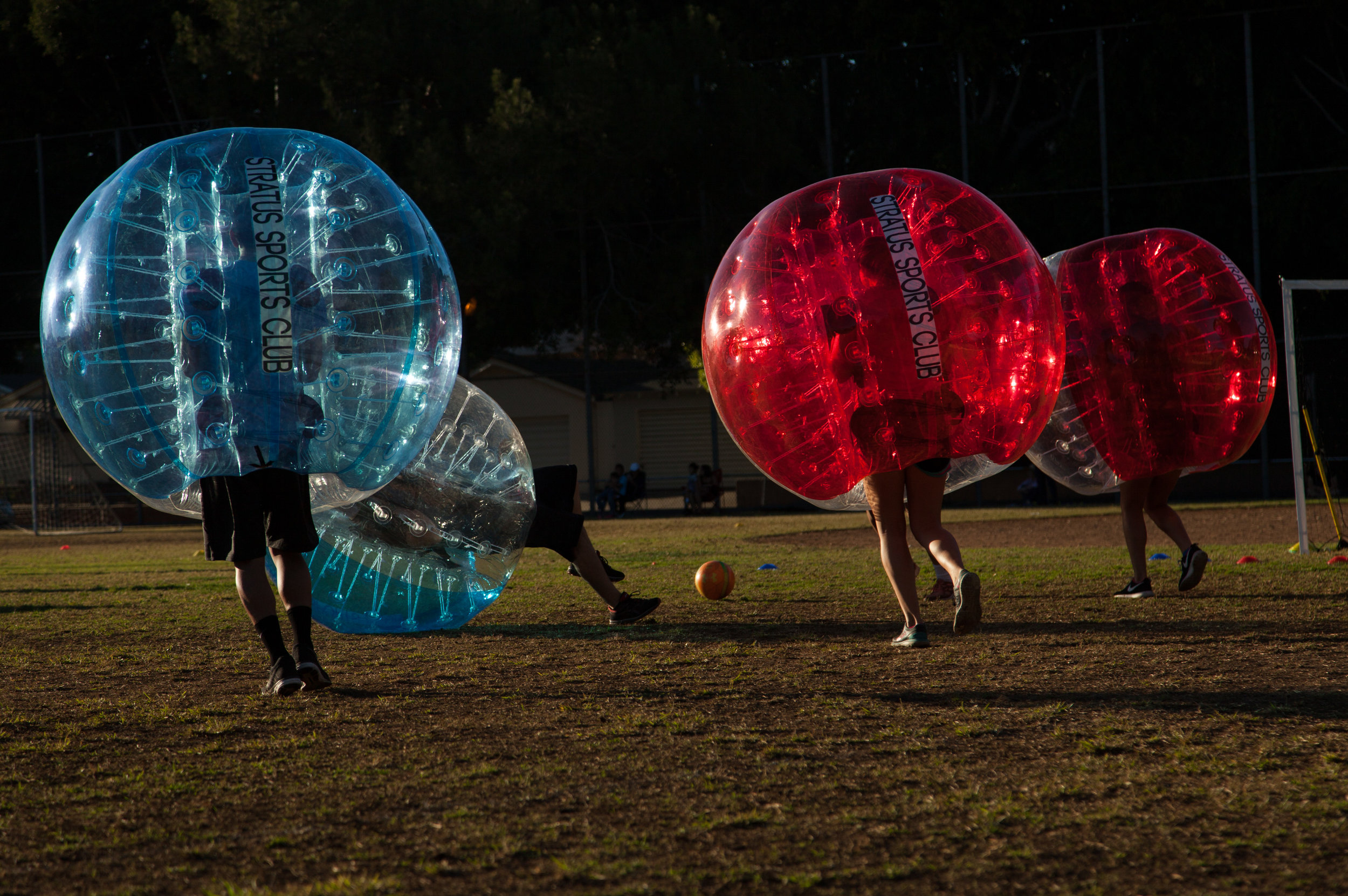 Action in a bubble soccer game in a Glendale park