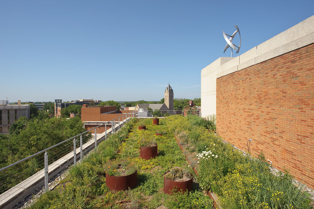 The roof demonstrates three types of green roof plantings--sedum,  meadowscape, and Virginia native. The building's vertical-axis wind turbine generates renewable energy on the roof above.