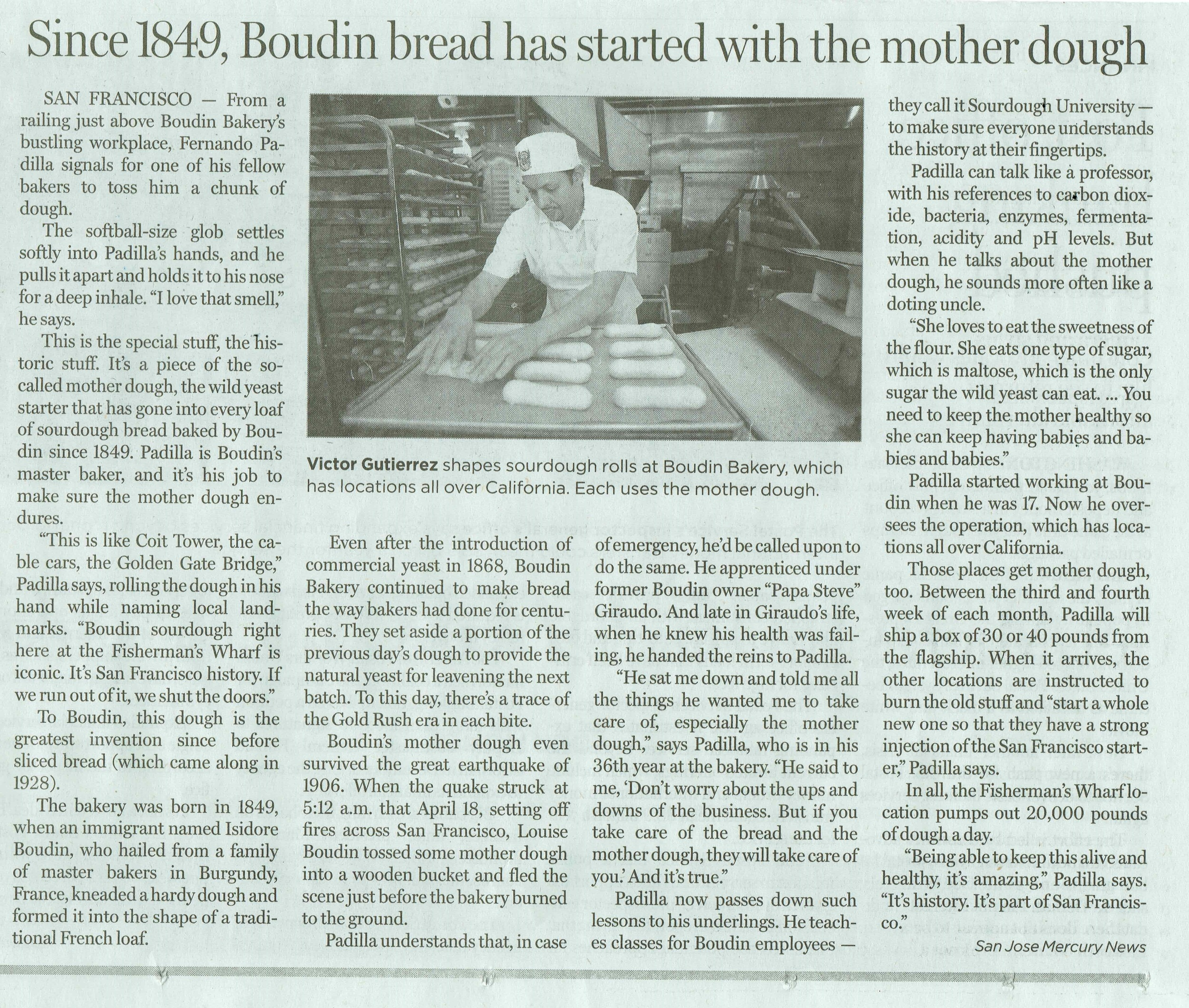 Boudin Article