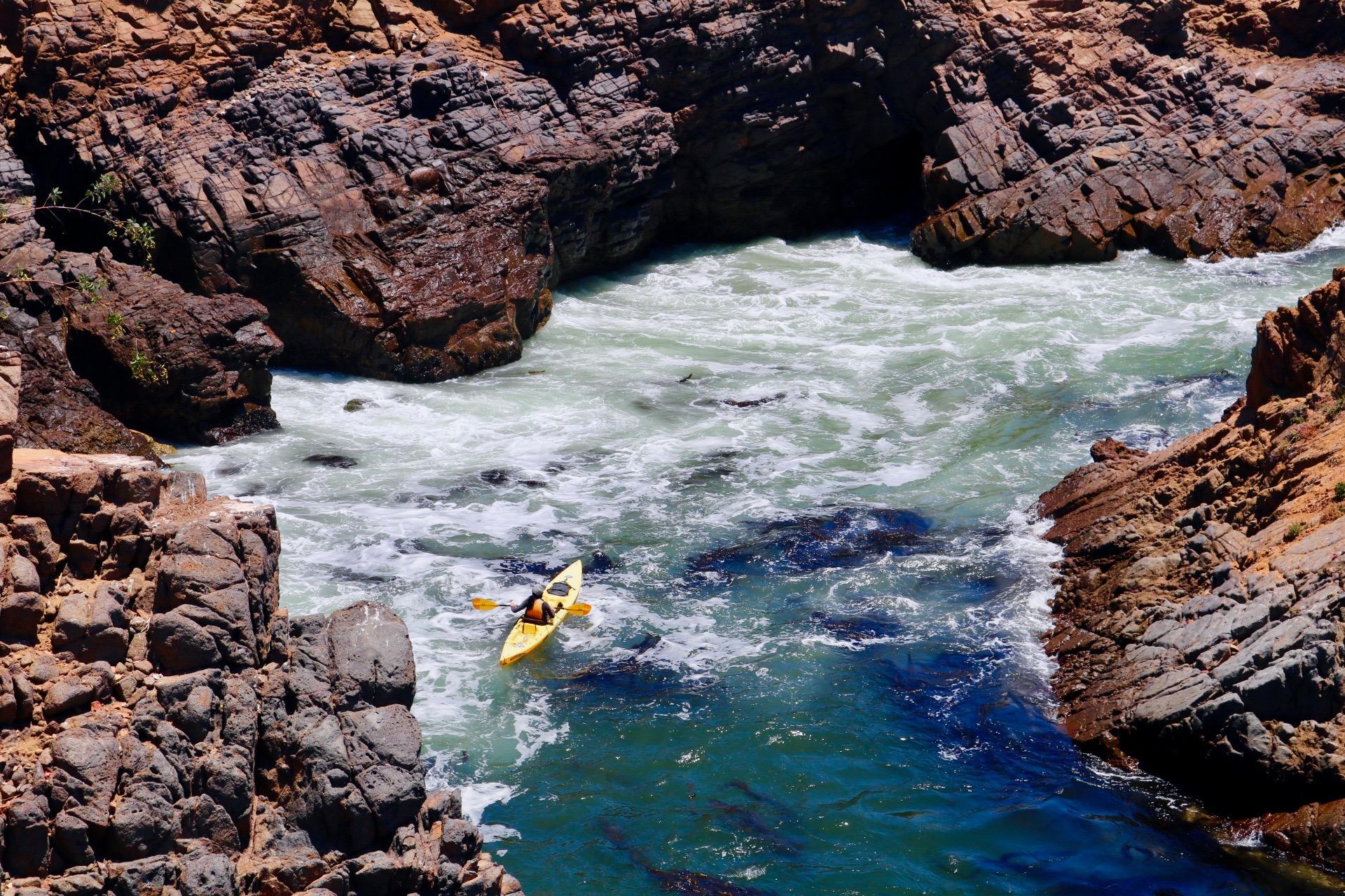 Baja Kayaker.jpg