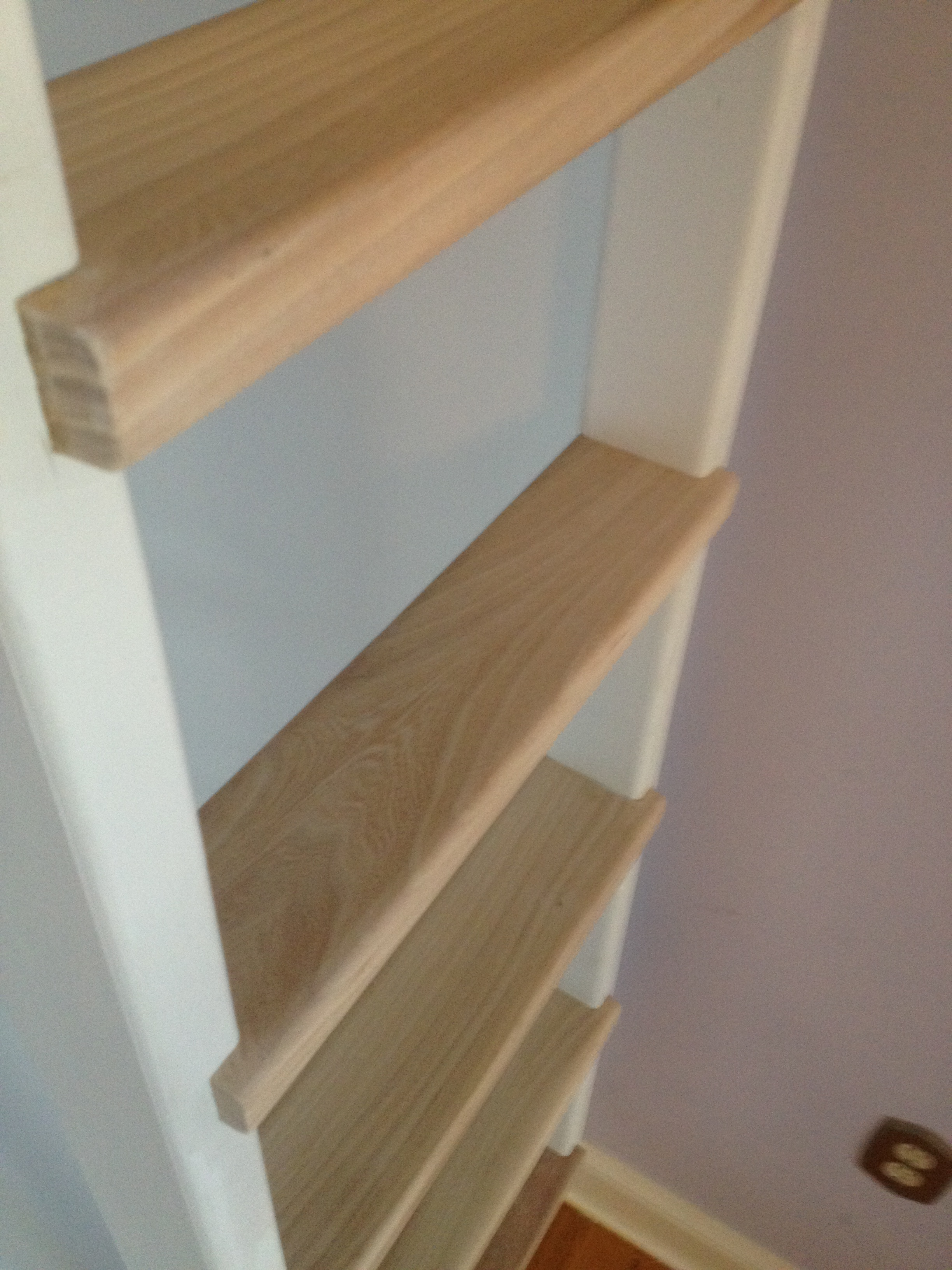 Princess Julia Ladder Steps.jpg