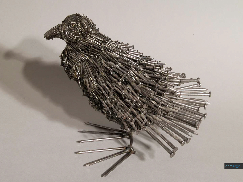BIRD_BLOG_FLICKR_BIRD (1).jpg