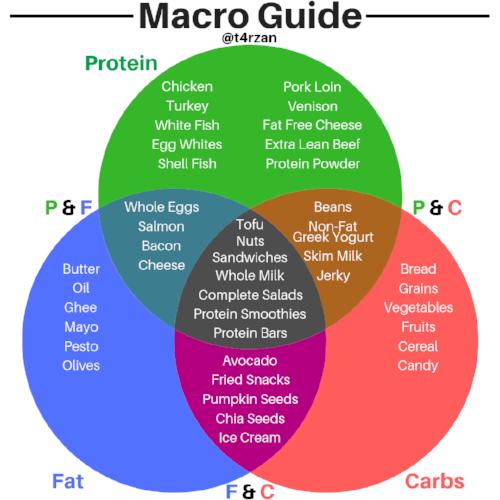 Macro Guide.png
