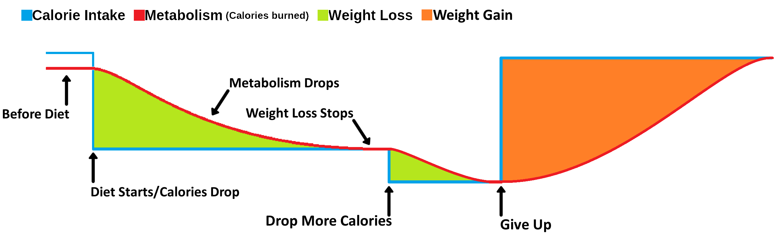 3 decrease Calories then give up - labeled.png