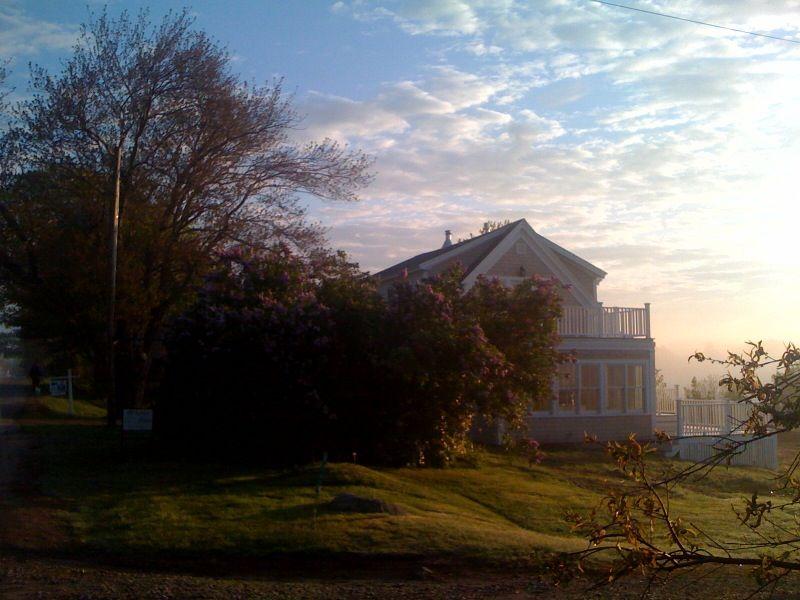 22Langsford-Dawn5-15-10.jpg