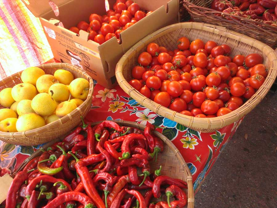 farmers_markets_Healdsburg_Sonoma_County_900x675.jpg