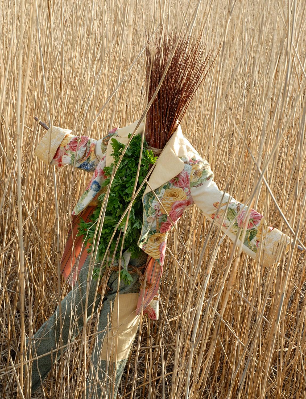scarecrow_crop.jpg