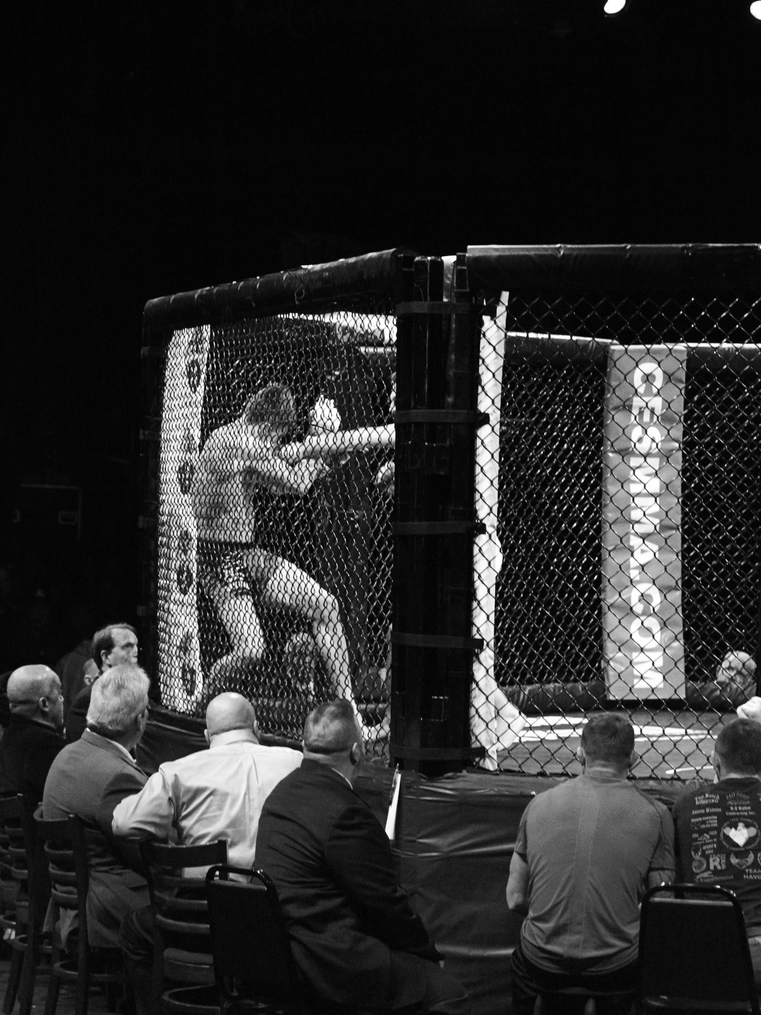 MMA Fight Night