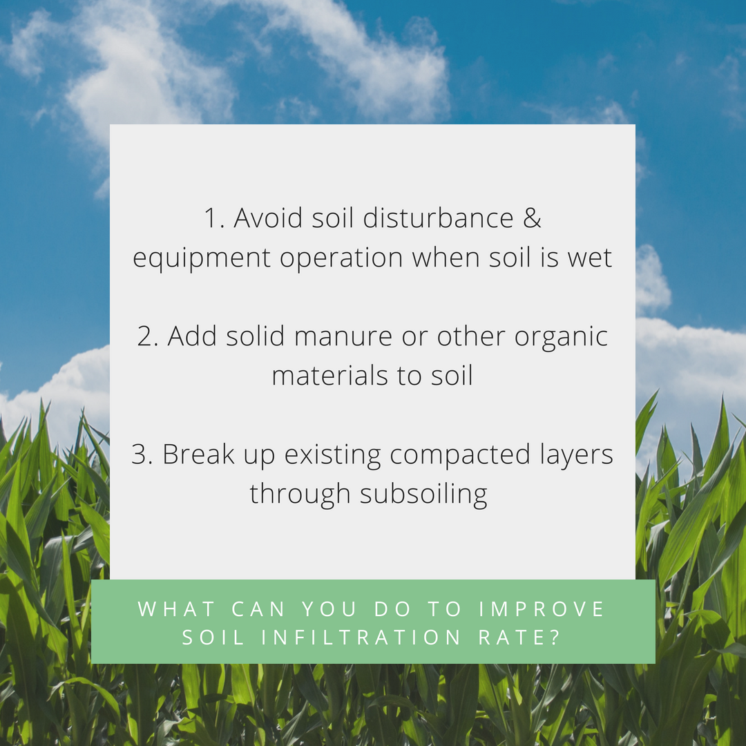 Figure 4: Three Ways Producers Can Improve Soil Infiltration Rates.