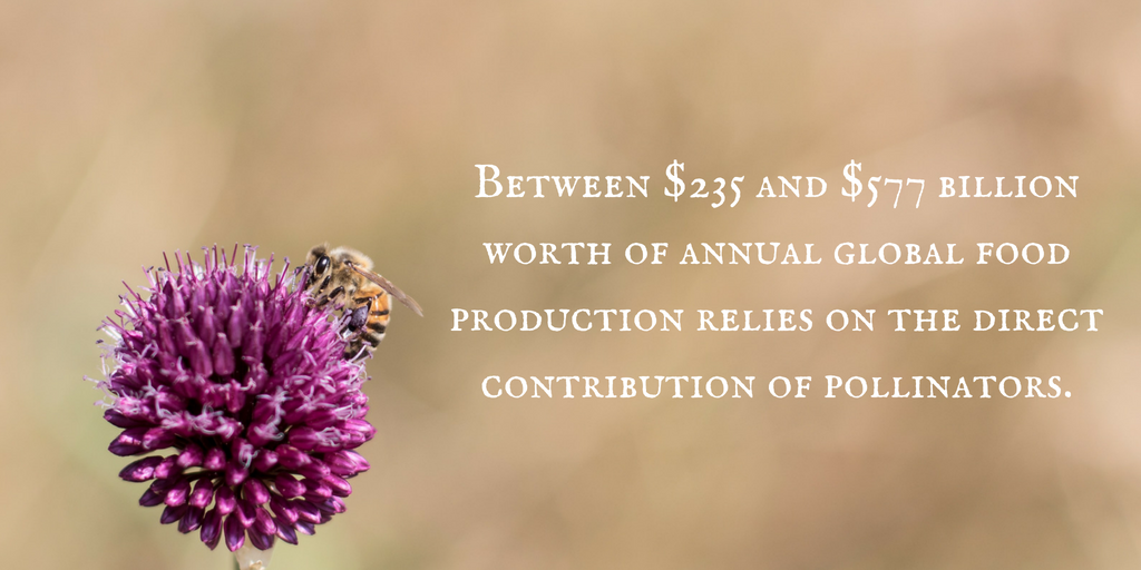 Bees & Food Production.png