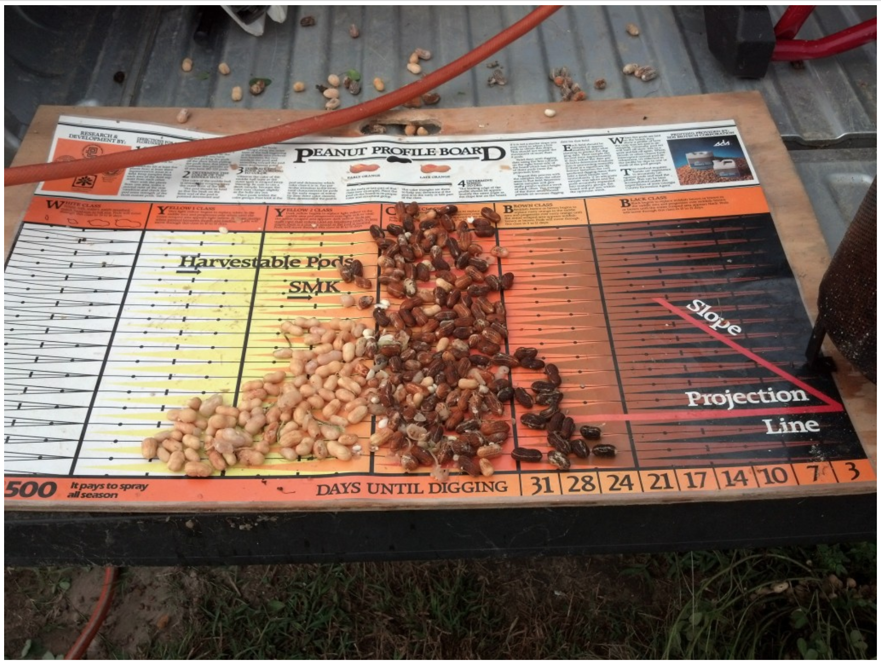 Peanut Profile Board. Credit: UGA Extension.