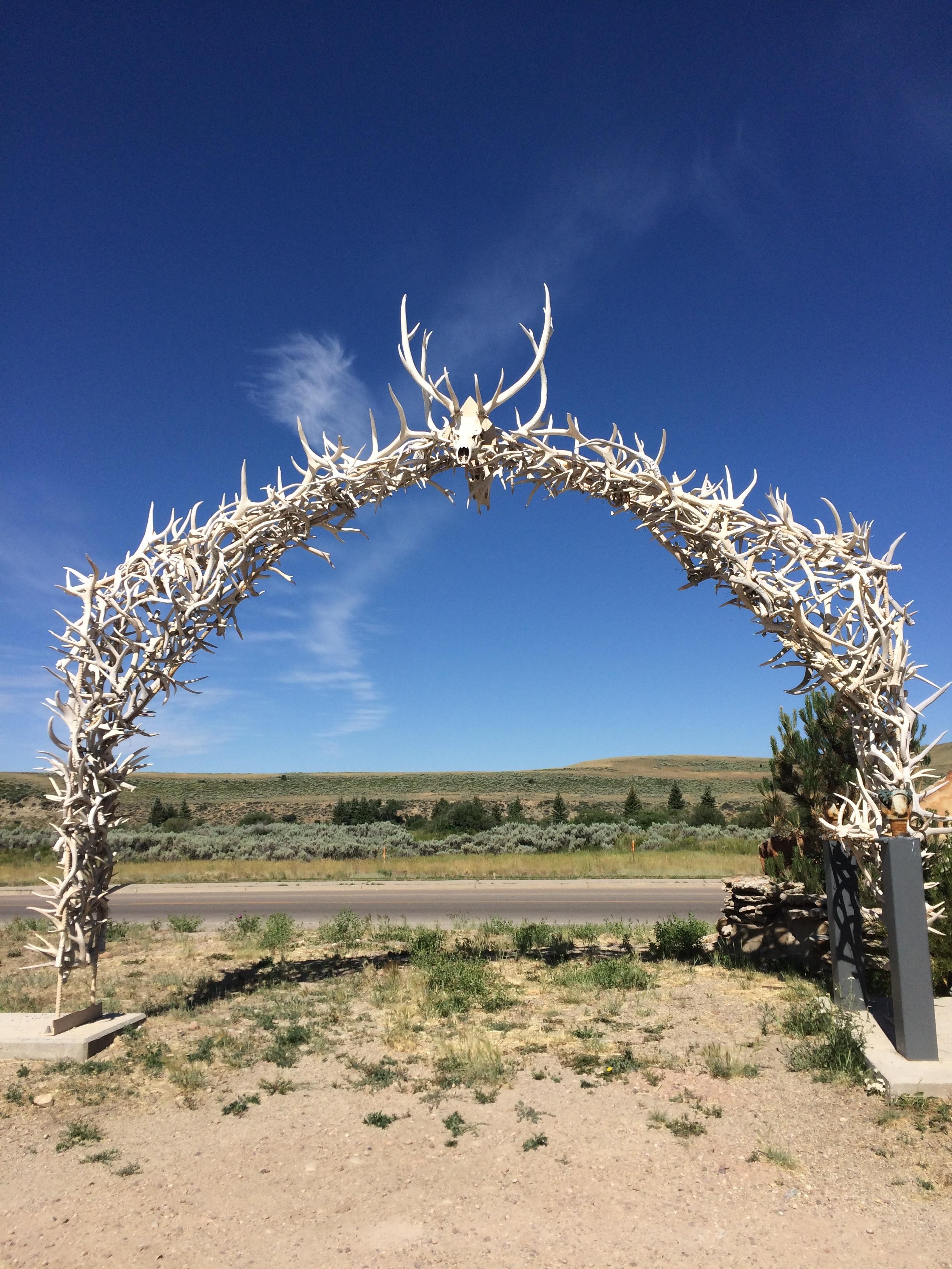 Wyoming wedding arch.