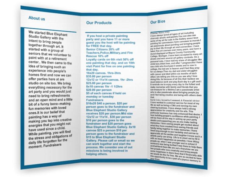 preview tri fold 2.jpg